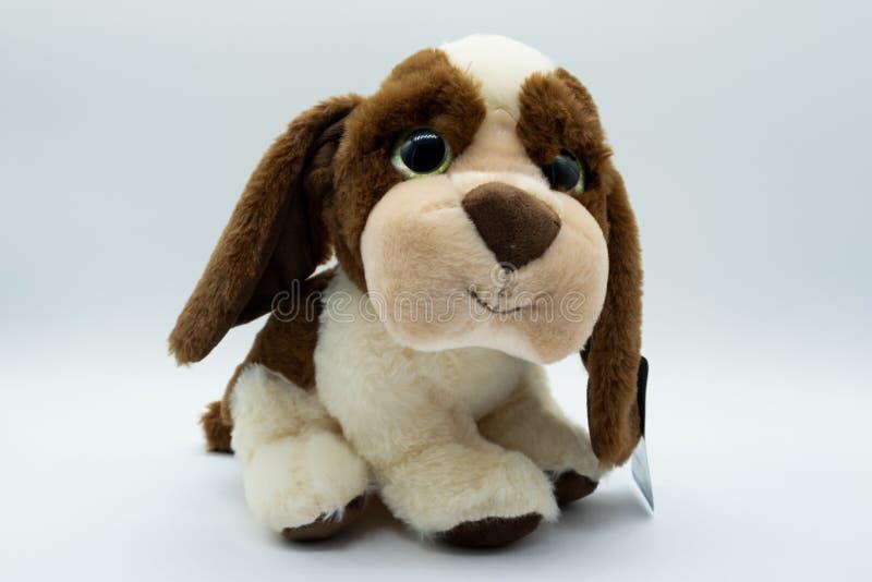 Brinquedo macio macio & peluches do cão com olhos grandes e as orelhas grandes foto de stock