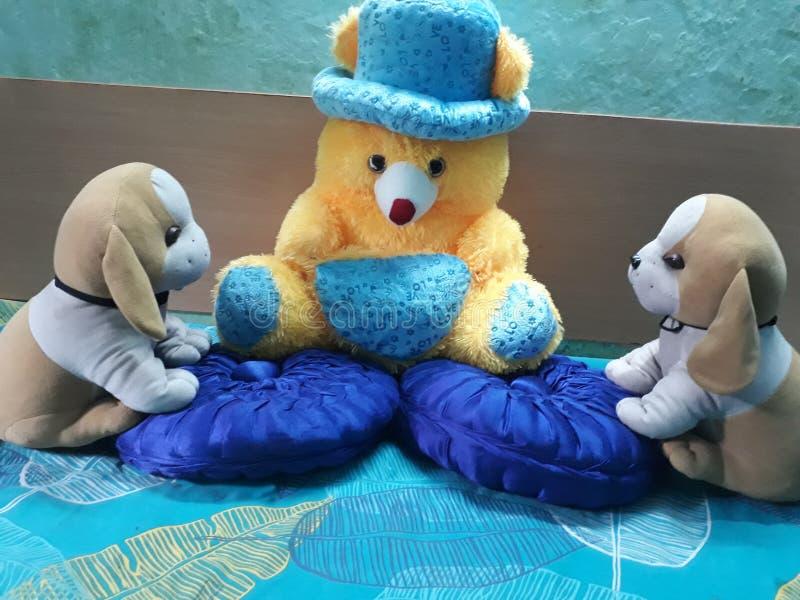 Brinquedos bonitos e bonitos do animal de estimação foto de stock royalty free
