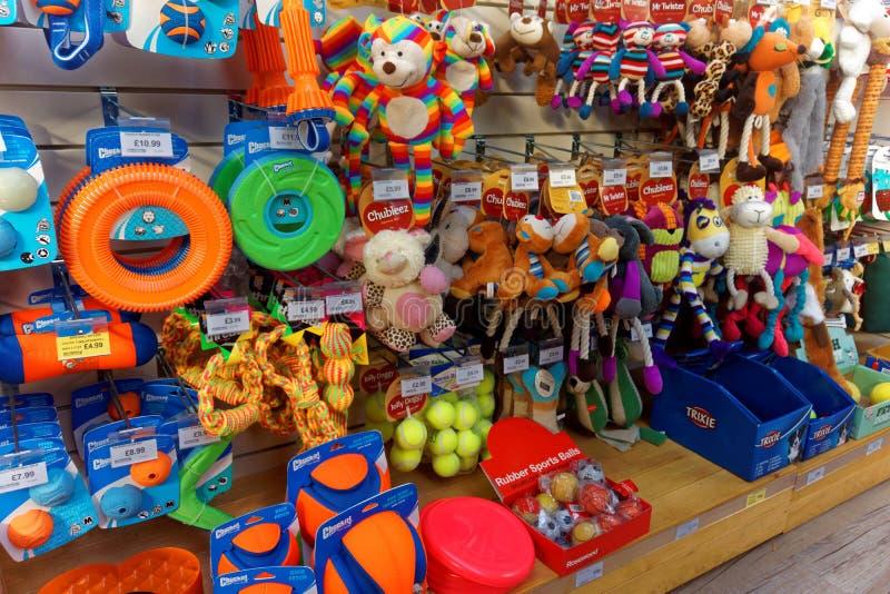 Brinquedos do cão na exposição da loja de animais de estimação imagens de stock