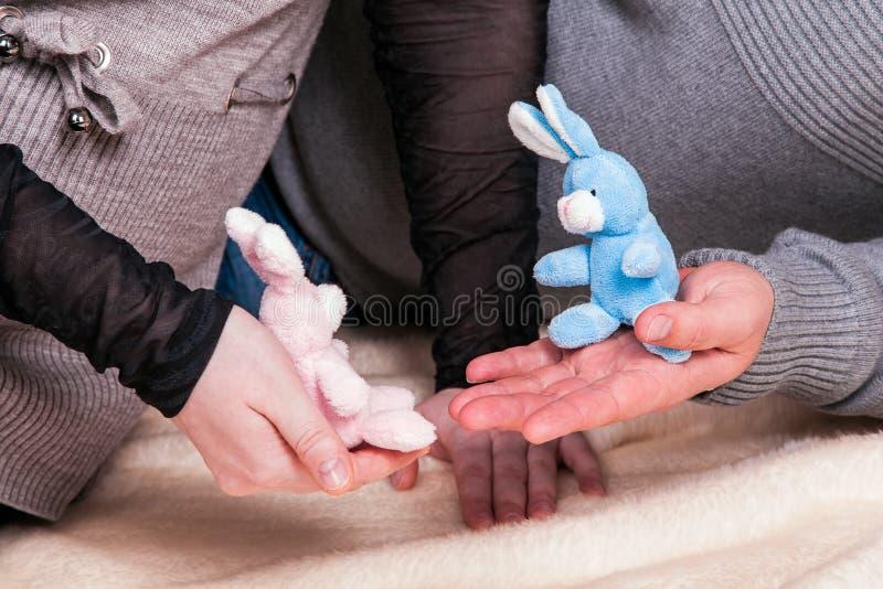 Brinquedos rosa e coelhos azuis nas mãos dos pais futuros como um símbolo da expectativa de gêmeos menino e menina do parto imagens de stock royalty free