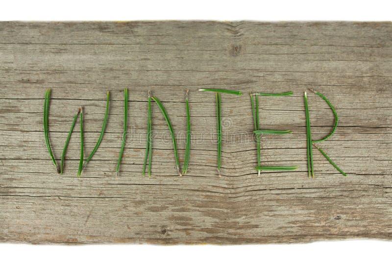 Brins à feuilles persistantes d'hiver sur le conseil en bois rustique photo libre de droits