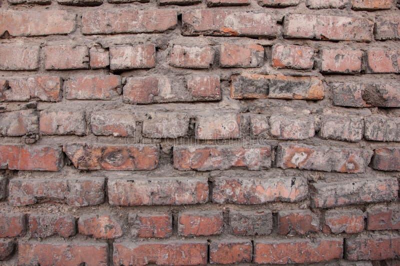 Brique rouge Fond fait de briques photo libre de droits