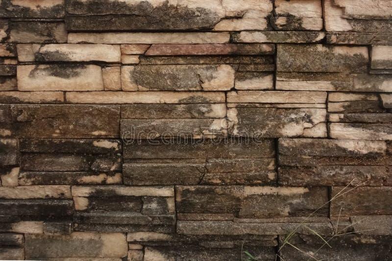 Briques décoratives érodées photos stock