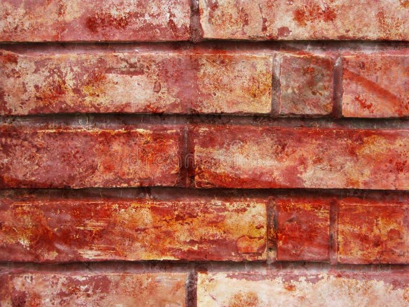 Briques grunges photographie stock