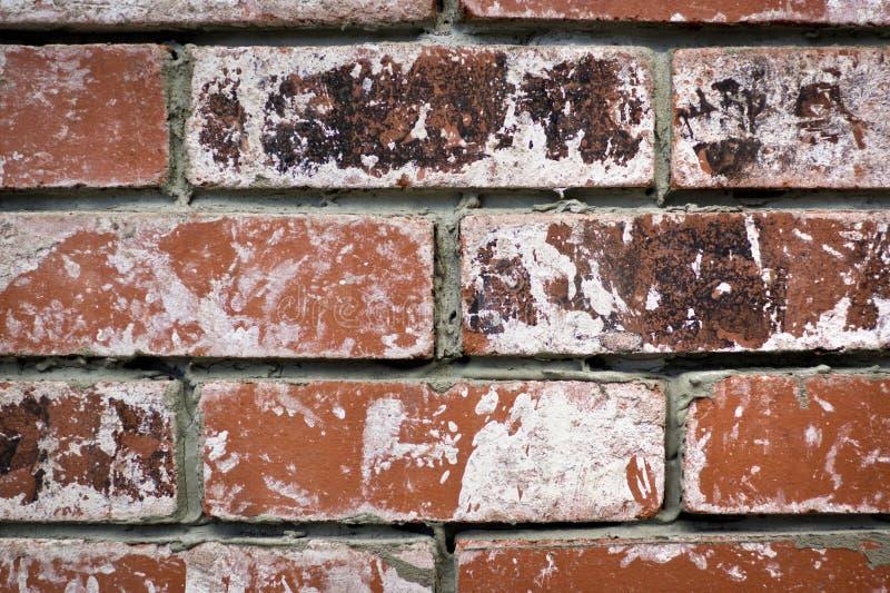 Briques usées photographie stock libre de droits