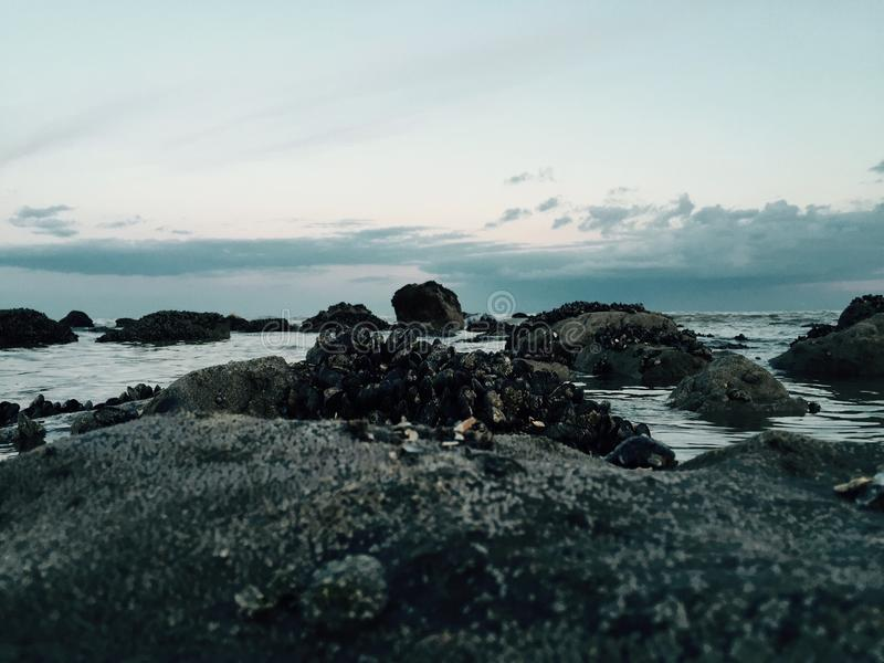 Brisa de mar fotos de stock