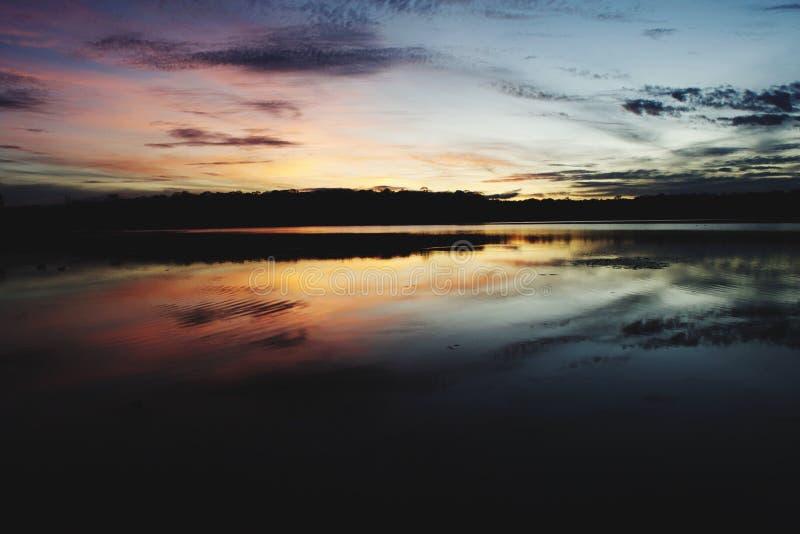 Brisbane solnedgång royaltyfri bild