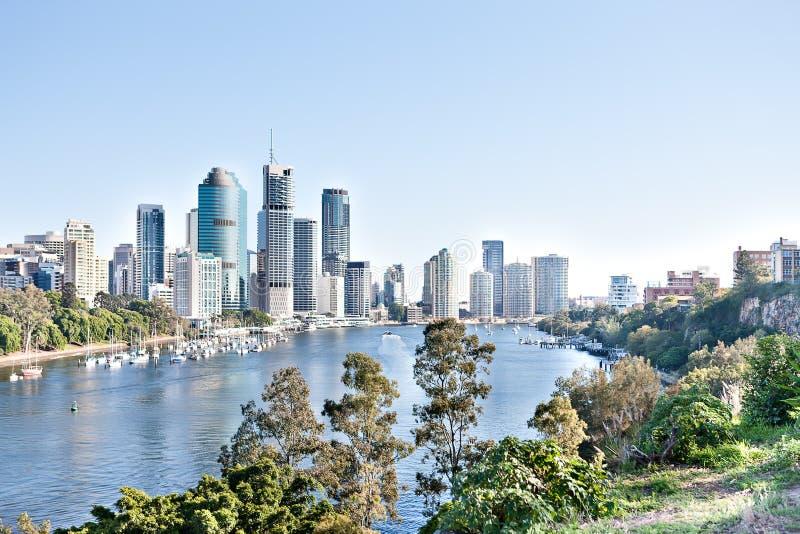 Brisbane stadsbyggnad med floden runt om tr?d p? den soliga dagen royaltyfria foton