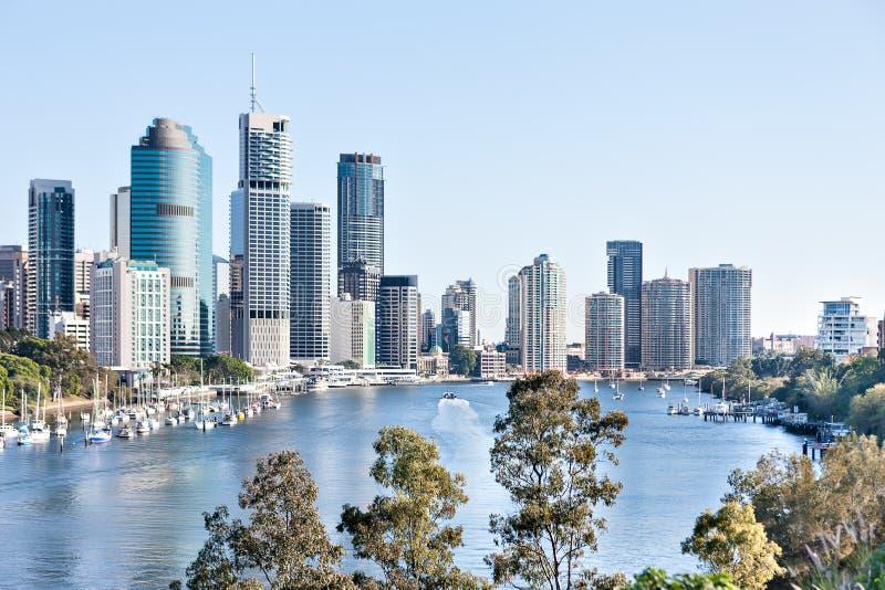 Brisbane stadsbyggnad med floden runt om tr?d p? den soliga dagen arkivfoto