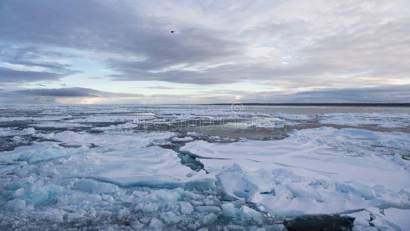 Brise-glace dans la glace image stock