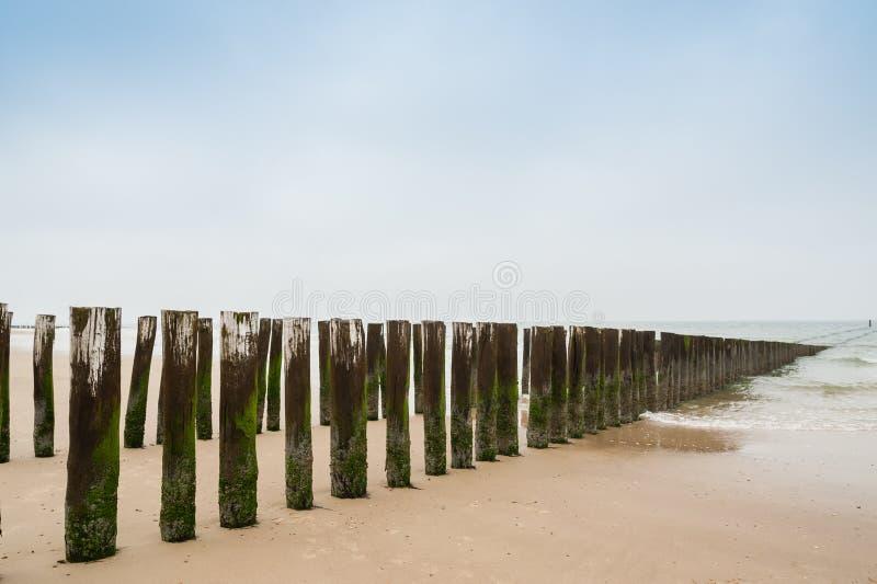 Briseurs de l'eau sur la côte néerlandaise photographie stock