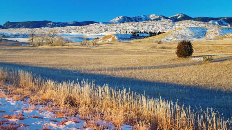 A Brisk Morning. The landscape at Chatfield State Park in Colorado is covered in frost, ice and snow as the warmth of the golden hour sunlight begins to warm the royalty free stock photos