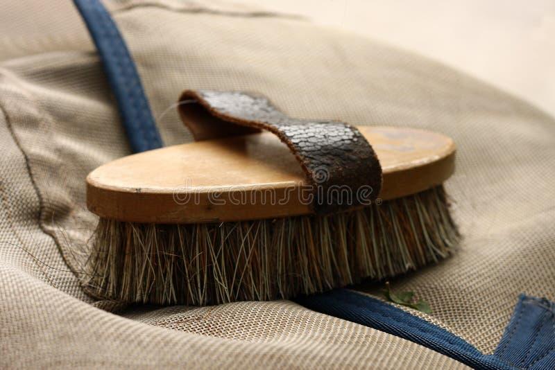 Bristle brush. Equine accessories, bristle brush for horses royalty free stock image