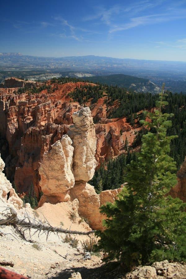 Free Bristlecone Loop Bryce Canyon 2 Royalty Free Stock Photos - 27223168