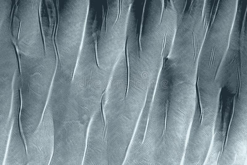 Bristly texture of feathers aligned for a background stock images
