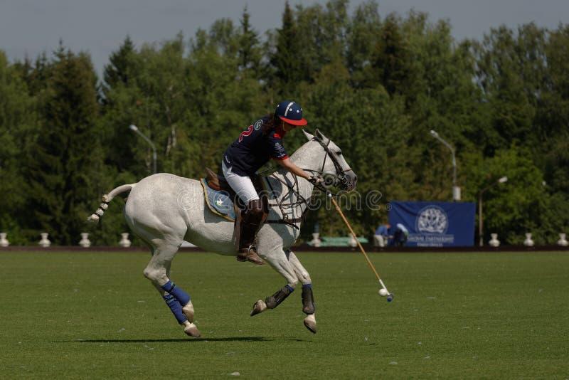 Briten Polo Day 2014 in Moskau lizenzfreies stockfoto