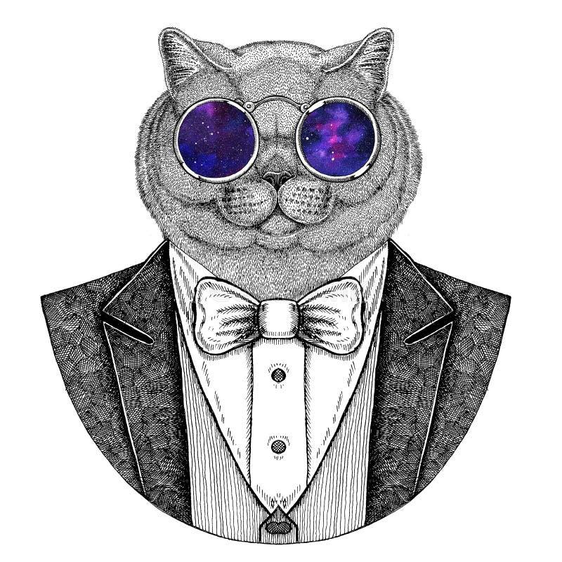 Brithish kota modnisia szlachetna zwierzęca ręka rysujący wizerunek dla tatuażu, emblemat, odznaka, logo, łata, koszulka ilustracja wektor