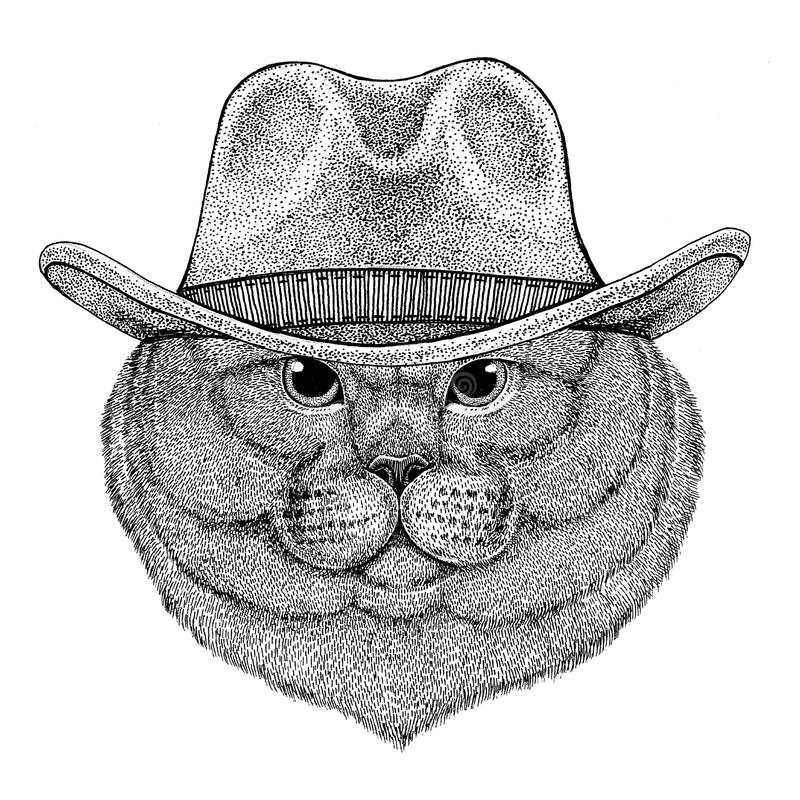 Brithish szlachetnego kota Męski dzikie zwierzę jest ubranym kowbojski kapelusz Dziką zachodnią zwierzęcą Kowbojską zwierzęcą kos ilustracji