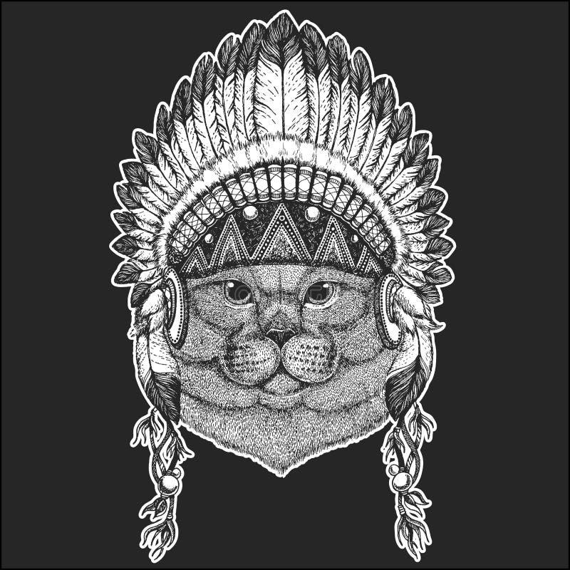 Brithish szlachetnego kota rodowitego amerykanina Męski Chłodno zwierzęcy jest ubranym indyjski pióropusz z piórka Boho szyka sty ilustracja wektor