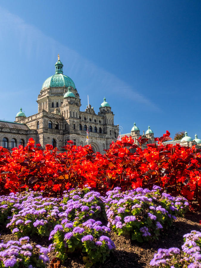 Britisch-Columbia-Parlament, das in voller Blüte errichtet lizenzfreie stockbilder