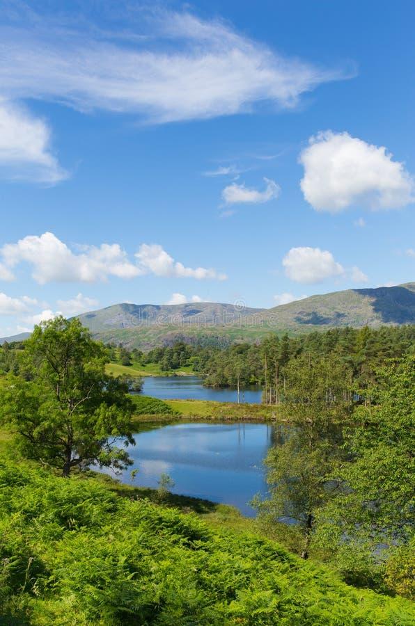 Britisches nahes hawkshead Tarn Hows See-Bezirks-Nationalpark-Englands lizenzfreie stockfotografie