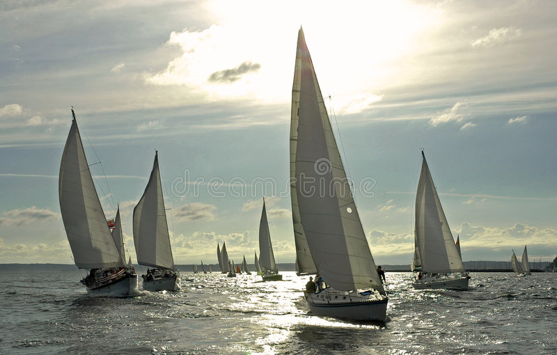 The British are Coming!. Group of sailboats on Elliott Bay with one flying the British Flag
