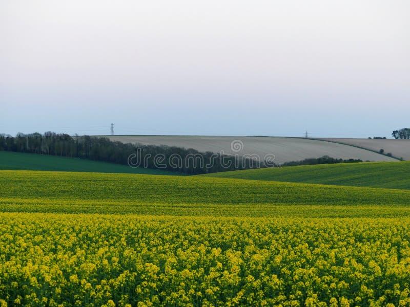 Brits platteland, gebieden dichtbij Stonehange, Engeland, met elektriciteitspylonen in de afstand stock fotografie