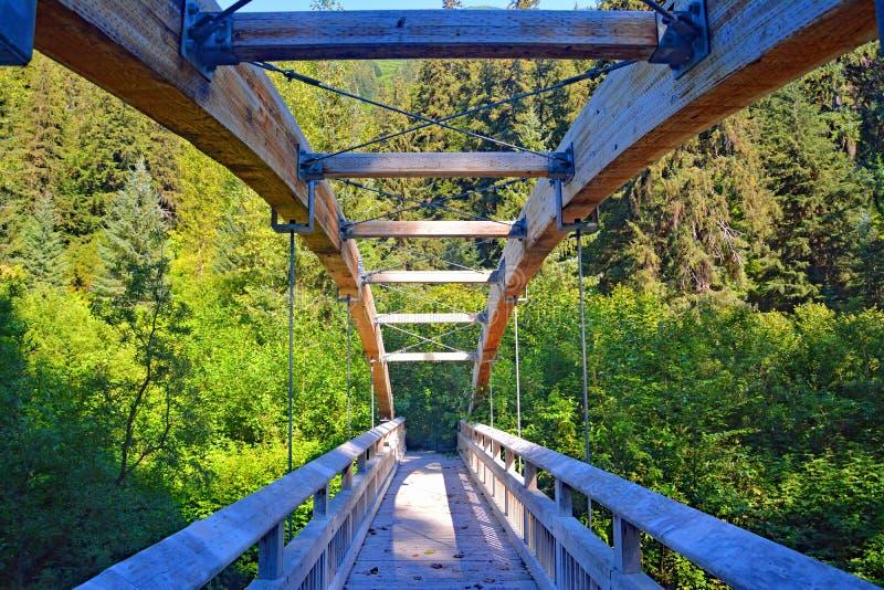 Britse Colombia hangende de brug houten bosbomen van Canada stock afbeelding