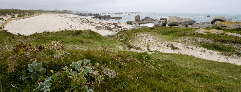 Brittany image libre de droits