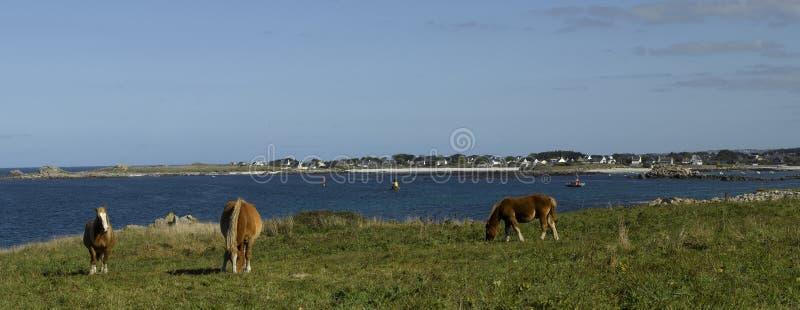 Brittany, Finistere: linea costiera di Kersaint immagini stock libere da diritti