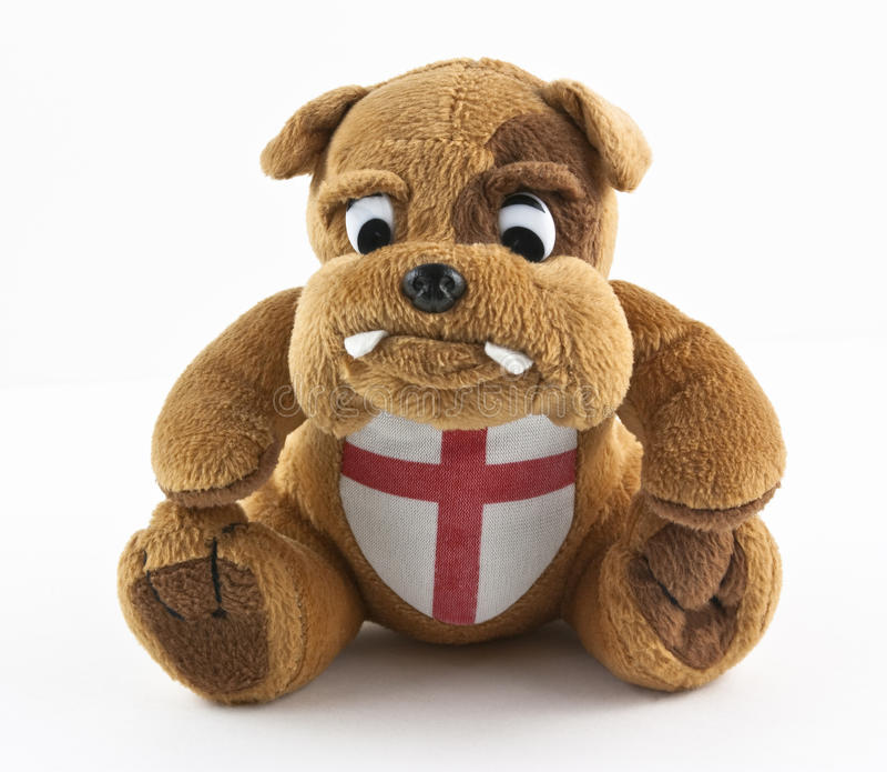 brittisk bulldogg royaltyfri bild