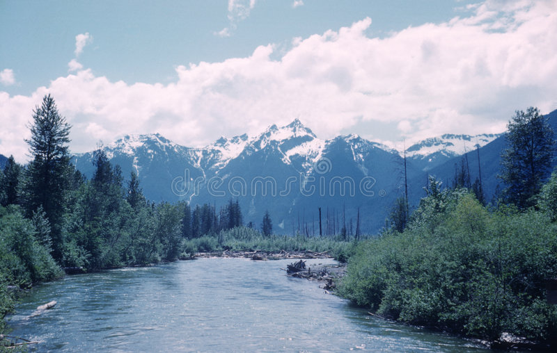 brittisk dal för Kanada columbia flodskagit arkivbild