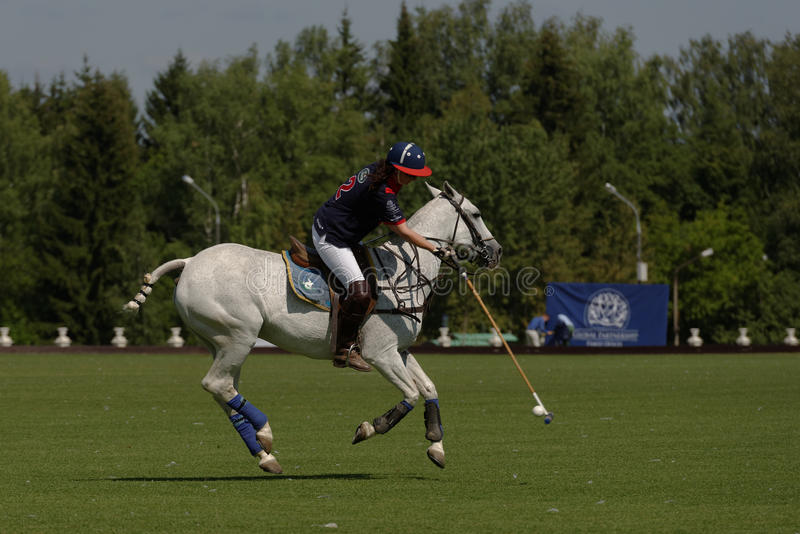 Brittiska Polo Day 2014 i Moskva royaltyfri foto
