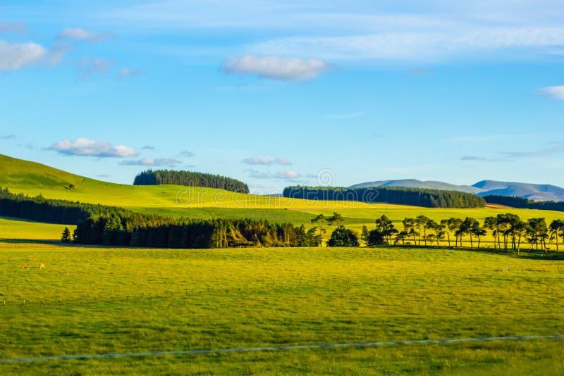 Brittiskt landskap i sommar fotografering för bildbyråer