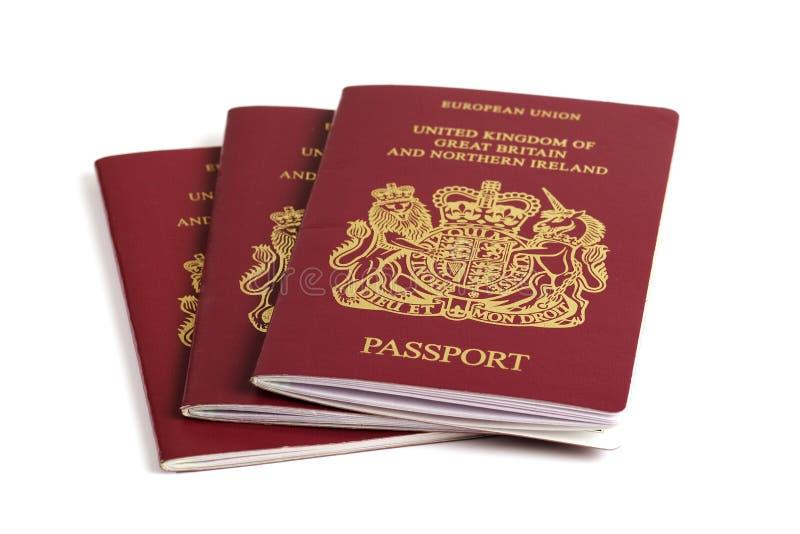 brittiskt pass royaltyfri foto