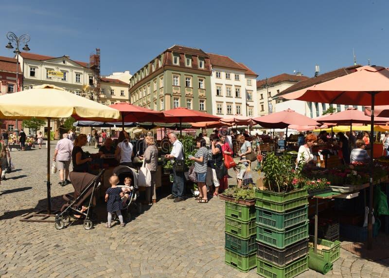 Brno, Tsjechische Republiek - 01 Juni, 2017: Het Vierkant van de koolmarkt in B royalty-vrije stock fotografie