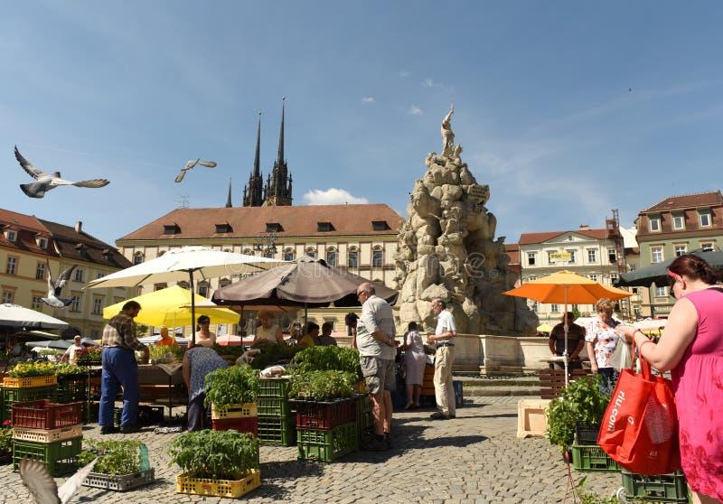 Brno, Tsjechische Republiek - 01 Juni, 2017: Het Vierkant van de koolmarkt in B stock foto