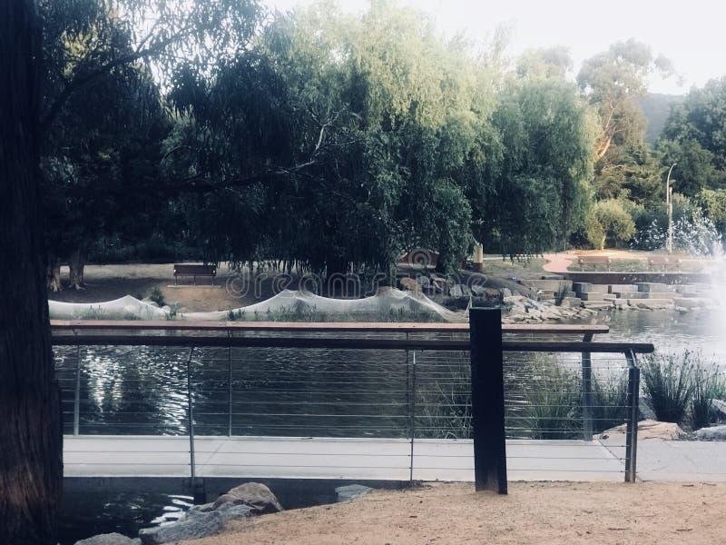 Bro över den härliga sjön royaltyfria foton