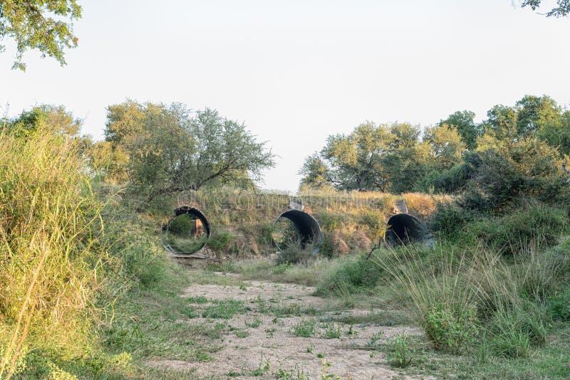 Bro över den Mhlambanyathi floden på vägen H4-1 arkivfoto