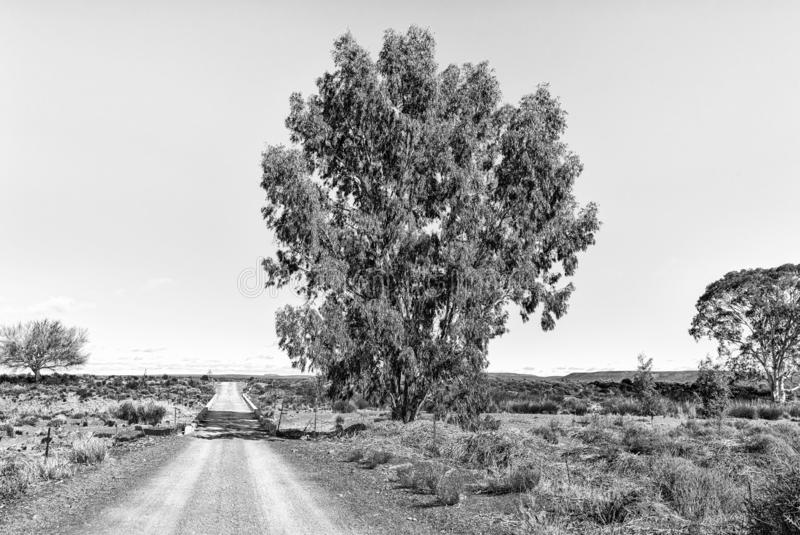 Bro över den Sak floden på vägen R356 nära Fraserburg monokrom arkivbilder
