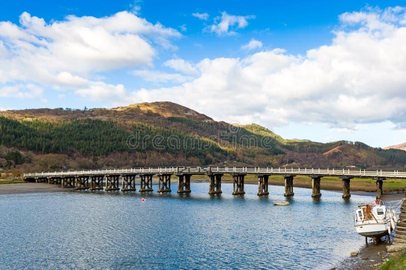 bro över den träfloden royaltyfria bilder