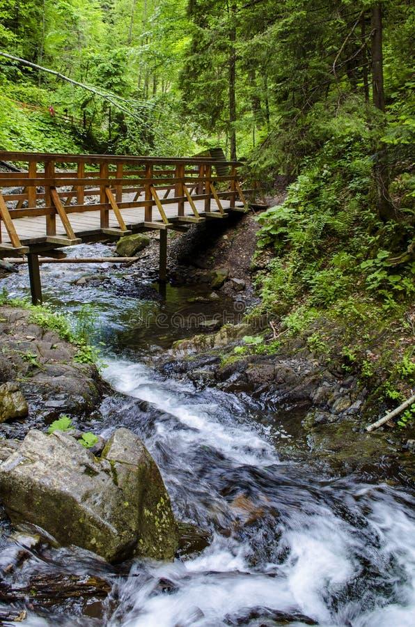 Bro över en bergflod arkivbild