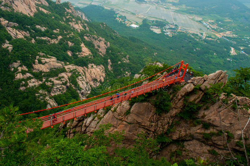 Bro av affärsföretaget royaltyfria foton