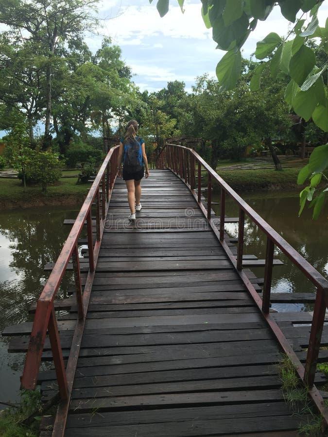 Bro av en trädgård av Thailand fotografering för bildbyråer