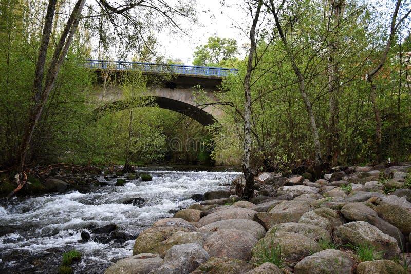 Bro med en halvcirkelformig båge royaltyfri foto