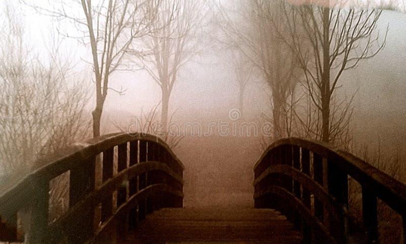 Bro med träd arkivbilder