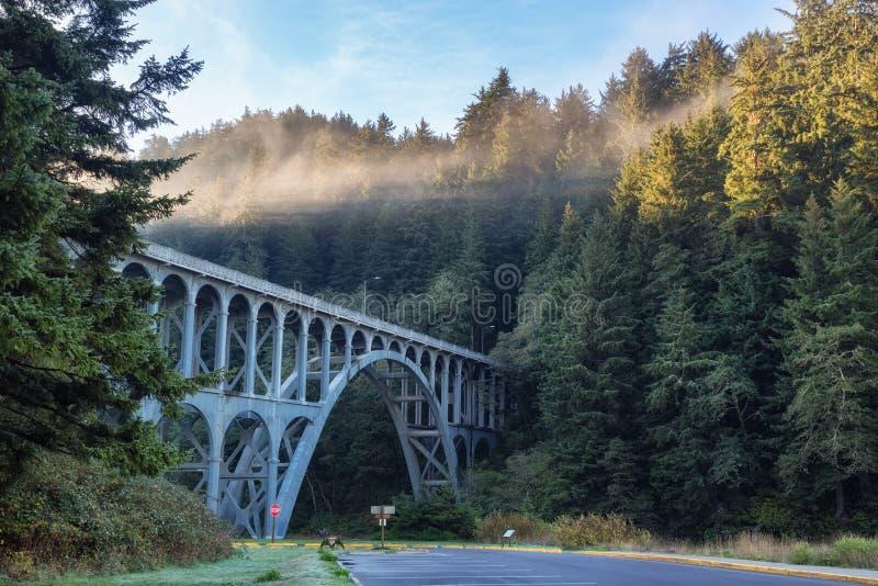 Bro nära den Heceta huvudfyren, Oregon kust royaltyfria foton