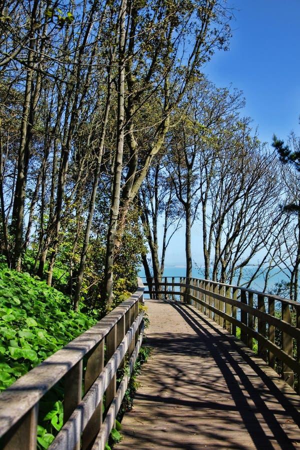 Bro på Langmoor-Lister trädgårdar royaltyfri bild