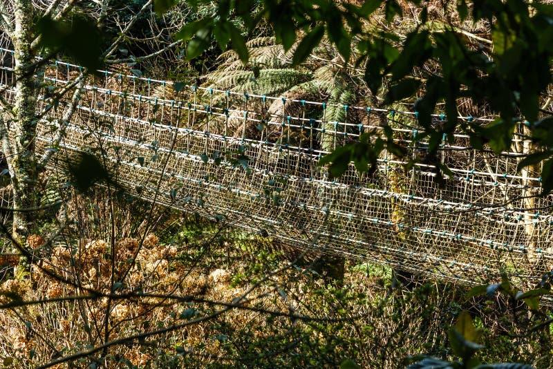 Bro som göras av rep, remmar royaltyfri foto