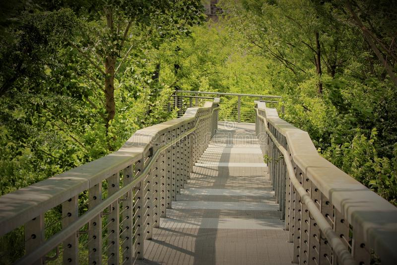 Bro till Cumberlandet River Nashville royaltyfria bilder